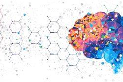 【事業者向け】企業が脳科学を活用する方策について